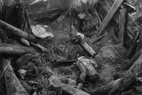 22 июня 1941 года Началась Великая Отечественная Война  - 107_495a100ddf2eb1863327716f6cf251a3.jpg