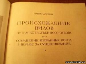 Книги тоже бумага - 0747871.jpg