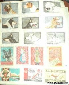 Просто старые фотографии, открытки - 7512761.jpg