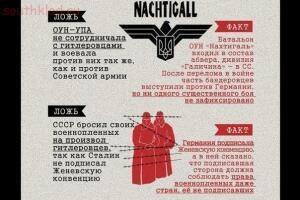 Инфографика: ложь и факты о Великой Отечественной - aIiWuGMlJGg.jpg