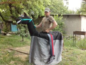 Конь в прокат - IMG_20150601_151956.jpg