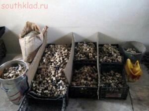 Неожиданные находки ...пополняемая - klads.org_.2012.3-300x225.jpg