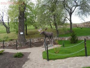Парк отдыха Лога в Старой Станице - SAM_1589.JPG
