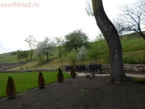 Парк отдыха Лога в Старой Станице - SAM_1590.JPG