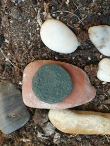 Определение и оценка Античных монет - Боспор 2.4.jpg