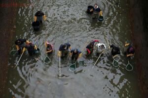 В Париже осушили канал Сен-Мартен - 3_022.jpg