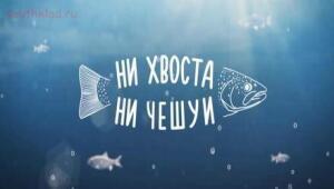 Рыболовный сезон 2016 - фвц.jpg