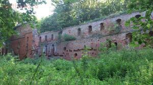 Руины замка Бальга 2014 г. - DSC_0275.JPG