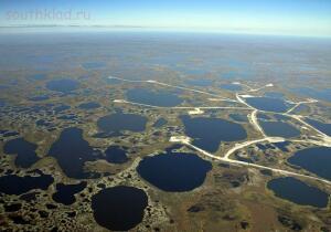 Васюганские болота - fdf02d8fd63178a7dc0aac75399c63fa.jpg