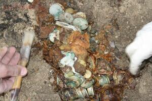 Возможно найден клад Плюшкина, прототипа героя романа Мертвые души  - 4340825.jpg