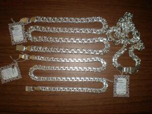 Серебряные цепи - P1010859.JPG