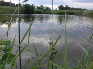 Рыболовный сезон 2017 - 20170617_180909.jpg