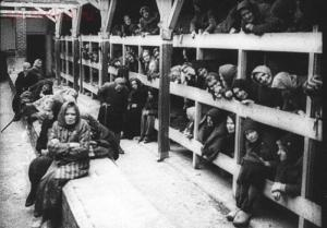Советские женщины в концентрационном лагере смерти. - 04.jpg