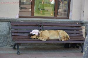 Московские каникулы - axU4SGsrH7o.jpg