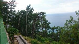 Поездка в Абхазию. - IMG-20170828-WA0012.jpg