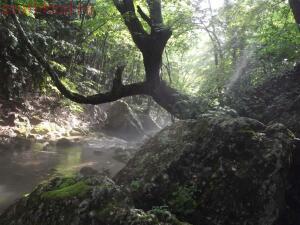 Тропами к Ванне Молодости ... или по Большому каньону Крыма - DSCF2045.jpg