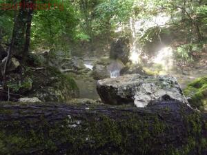 Тропами к Ванне Молодости ... или по Большому каньону Крыма - DSCF2050.jpg