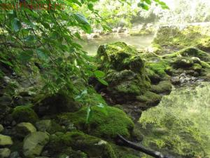 Тропами к Ванне Молодости ... или по Большому каньону Крыма - DSCF2067.jpg