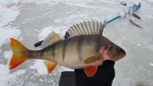 Зимняя рыбалка на Ладожском озере плотва  - 4ceEpC_Wwn0.jpg