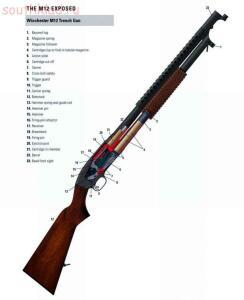 Стрелковое оружие в разрезе - E8MiEEfENpw.jpg