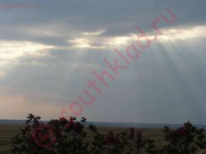 Мини сбор под Каменском ... Отчет - P1040177_thumb.jpg