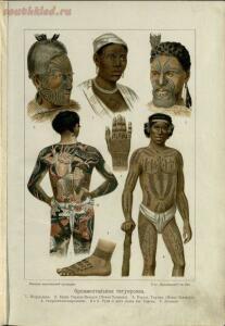 История первобытной культуры 1907 год - screenshot_4793.jpg