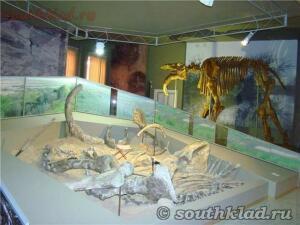 Азовский историко-археологический и палеонтологический музей - 9fac4b99e0ac.jpg
