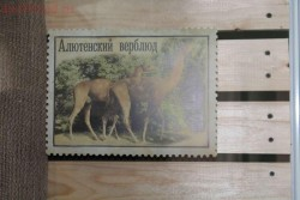 Ростовский краеведческий музей - 8.JPG
