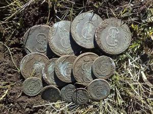 sibirskie_monety