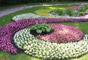 Как поддержать порядок на цветущей клумбе